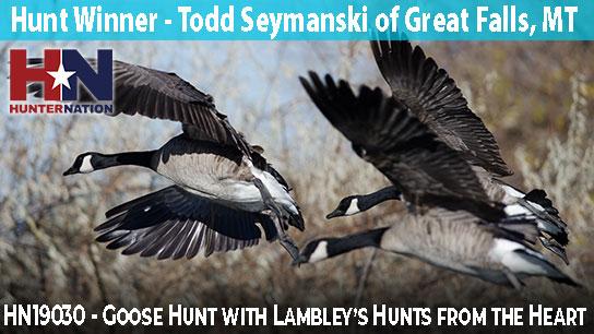 HN19030-Lambleys-Goose-Hunt-Todd-Seymanski_544