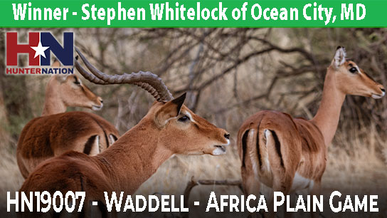 HN19007-Waddell-Africa-Hunt-Winner_544