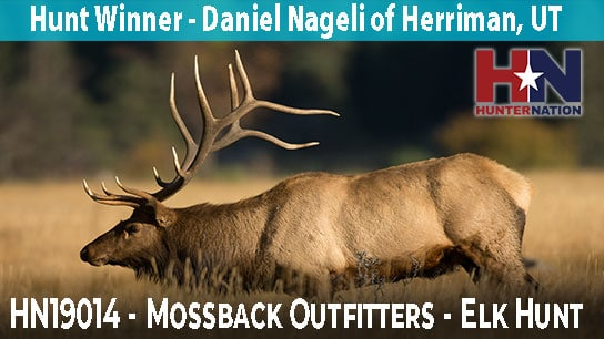 HN19014-Mossback-Elk-Hunt-Winner_544