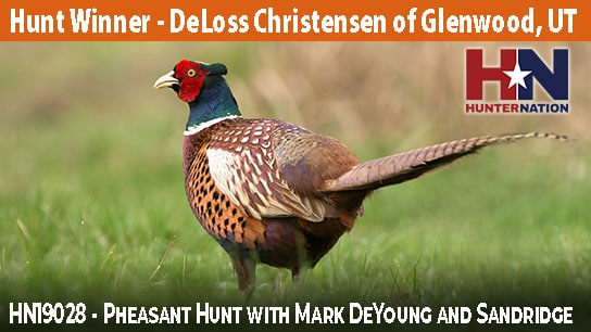 HN19028-Mark-DeYoung-Pheasant-Hunt_544